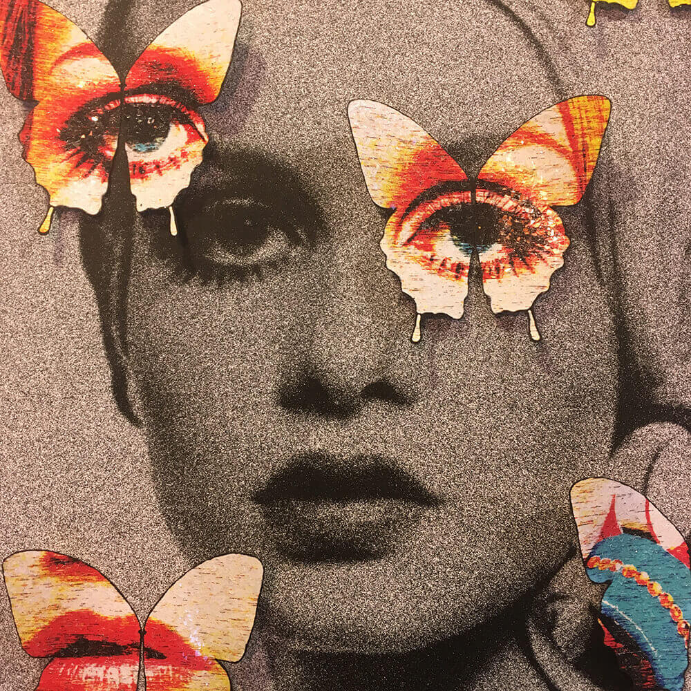 Butterfly Faces Twiggy image 5 (1)